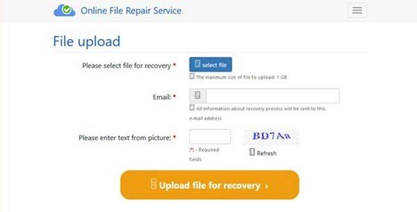 online file repair service