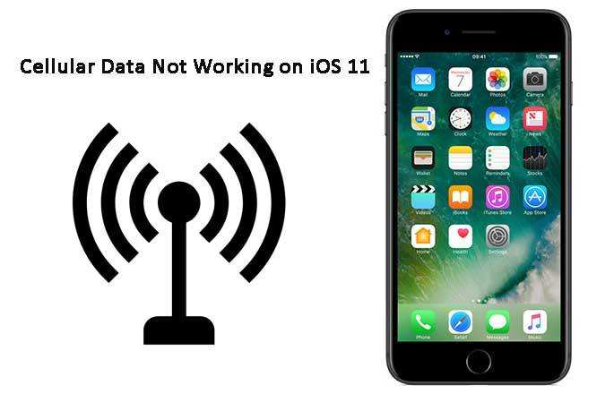 Top 6 Ways to Fix Cellular Data Not Working After iOS 12 1 3/12/11