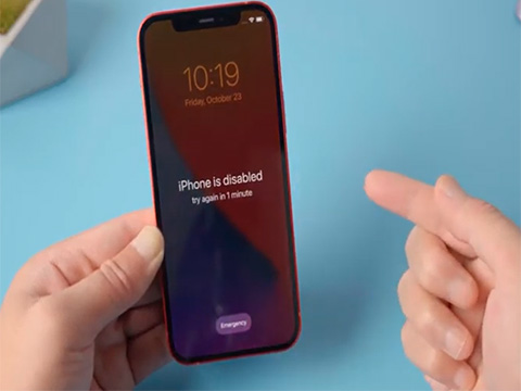 Top 2 Ways to Fix iPhone Spinning Wheel Black Screen Stuck without Data Loss iOS 13