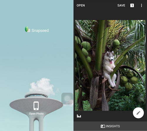 The Ultimate Guide on How to Use Snapseed Photo Editing App